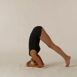 Shirshasana_3.jpg